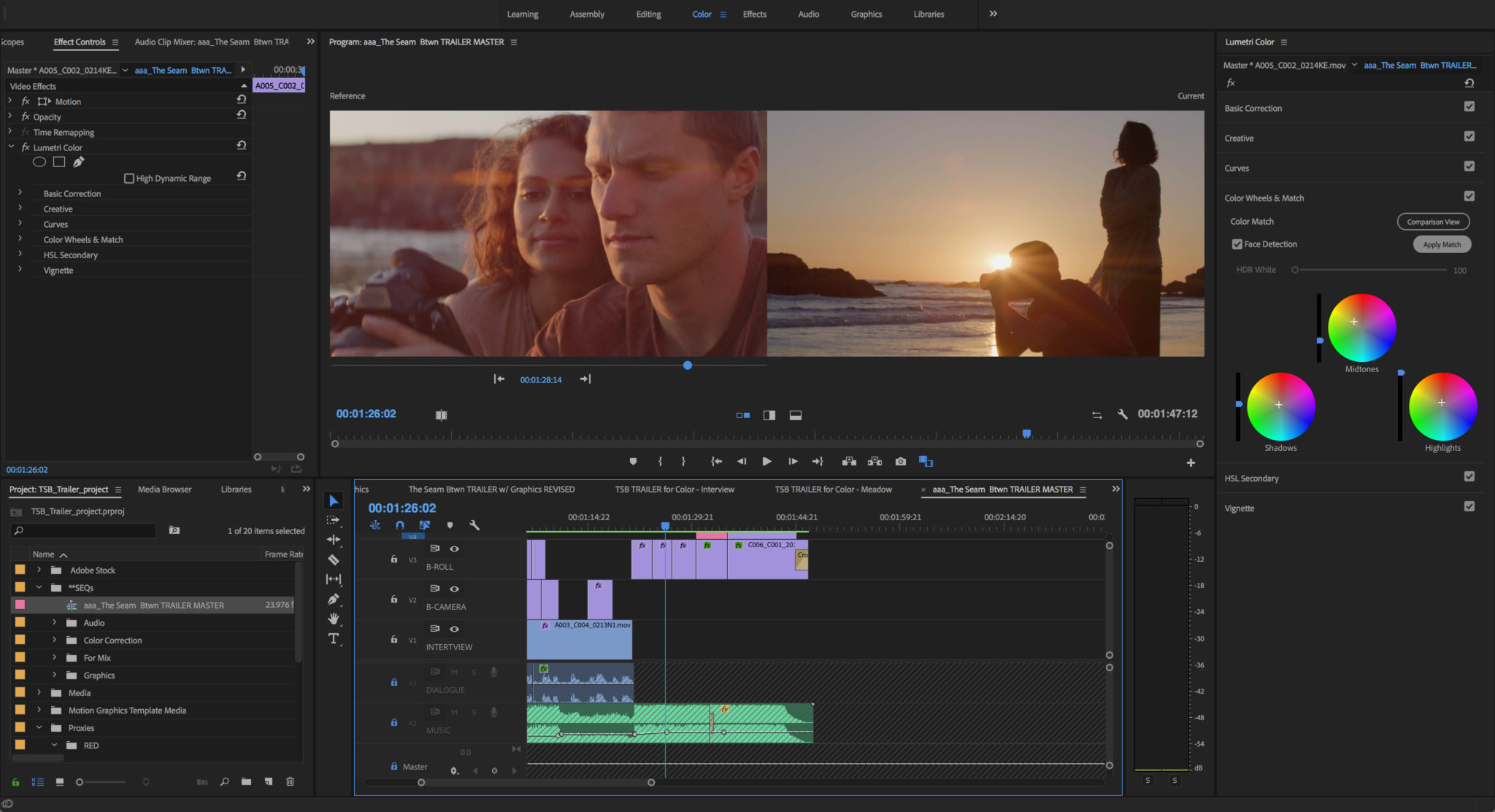 screen grab from Premiere Pro