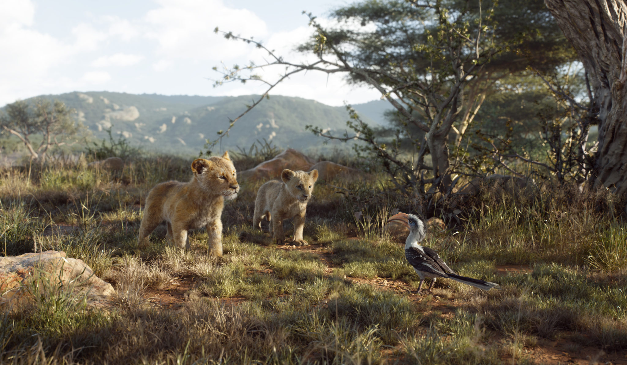 A scene from <i>The Lion King</i>