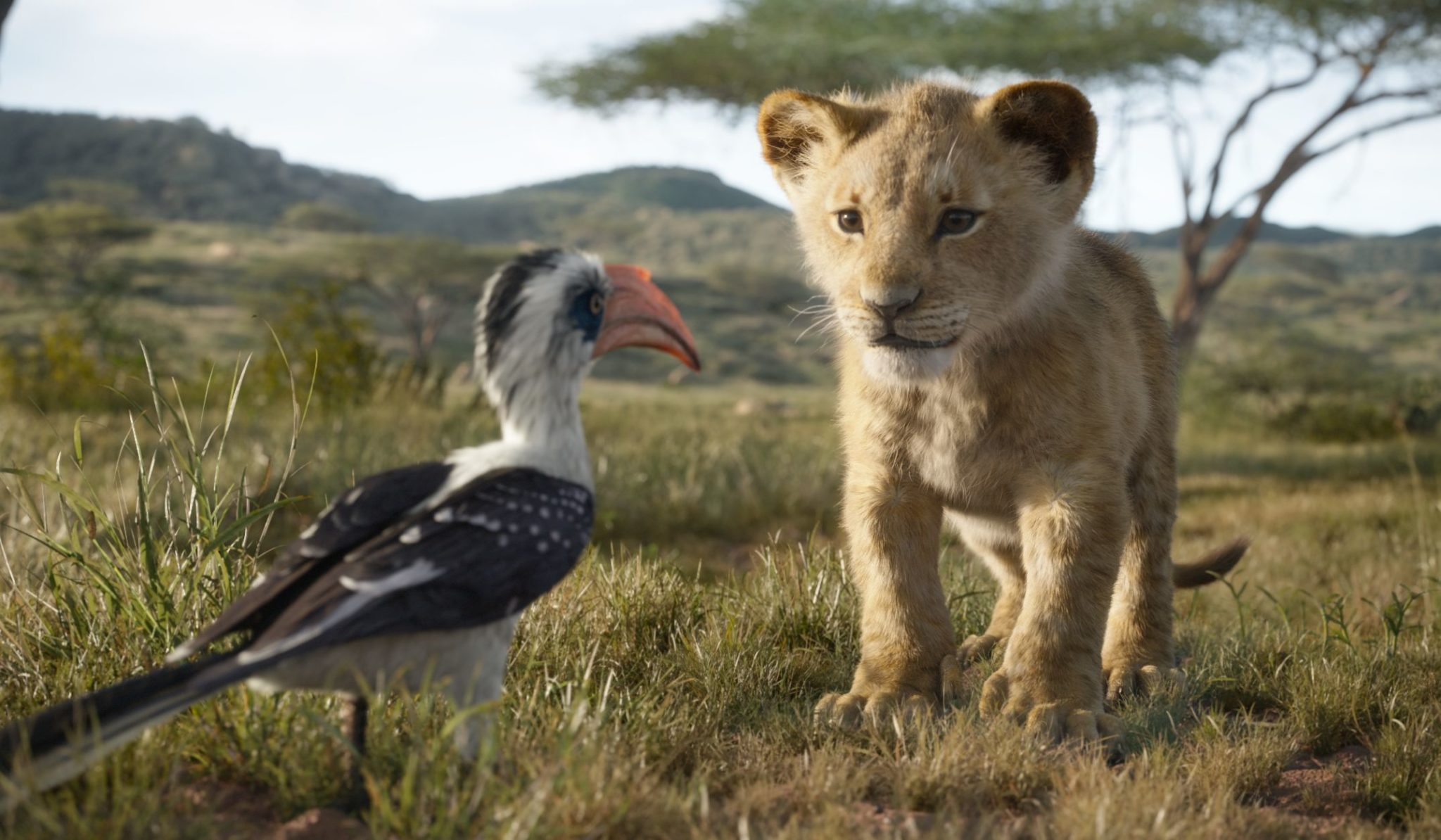 Photoreal animated characters in <i>The Lion King</i>.
